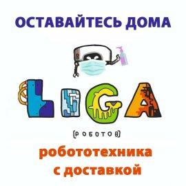 Дистанционное обучение в Лиге Роботов